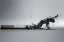 Курение - причина заболевания шейки матки