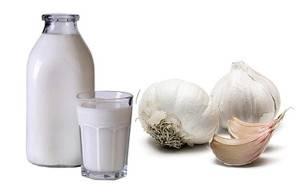 Молоко и чеснок при ларингите