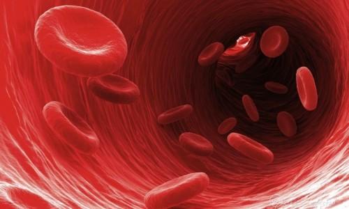 Движение крови к сердцу