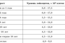 Норма лейкоцитов в крови