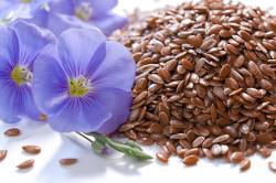 Семена льна от запоров