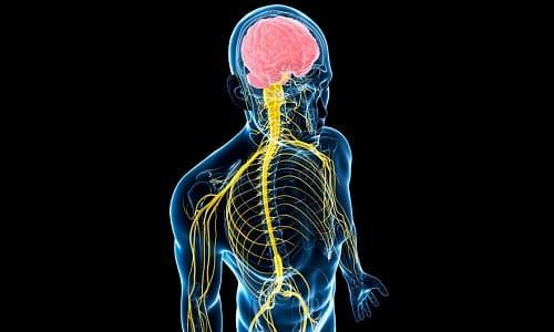 Одной из причин возникновения жжения во время мочеиспускания являются нарушения в работе нервной системы